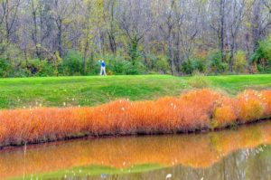 Old Hickory Golf Club, St. Louis Golf Courses