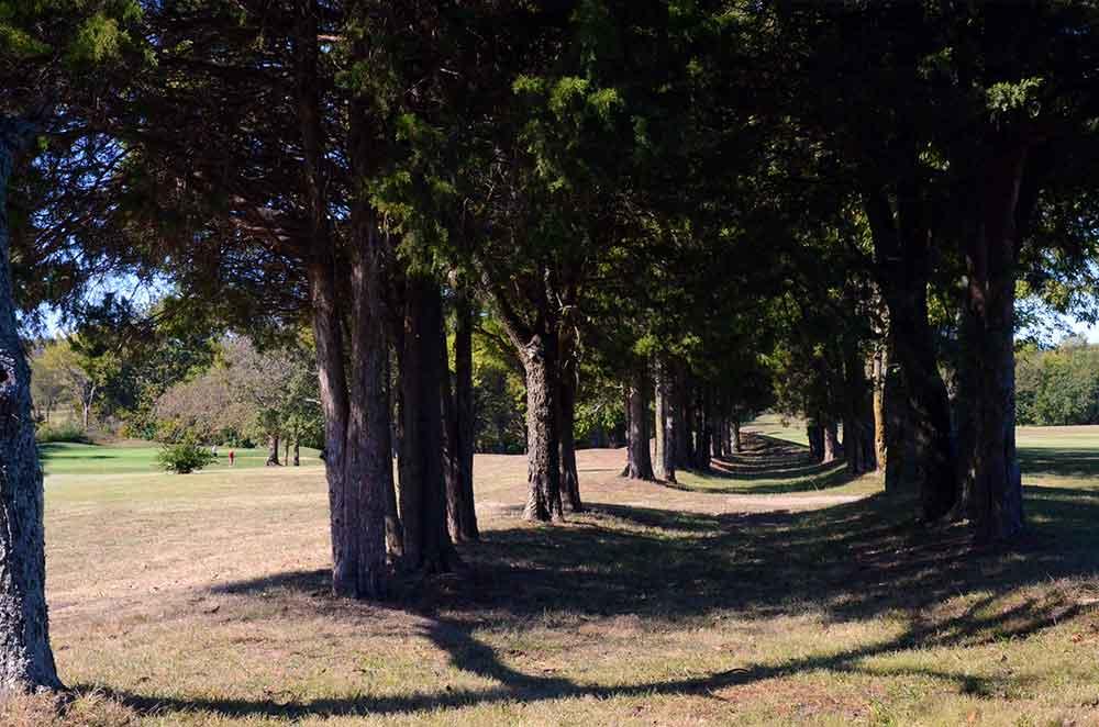 St-Francois-Country-Club,-Farmington,-MO-Trees