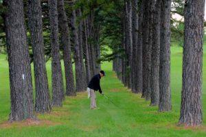 Ste. Genevieve Golf Club, Ste. Genevieve Golf Courses