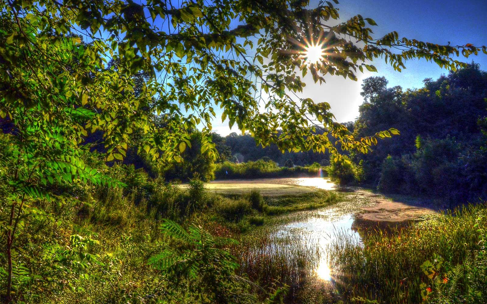 Sugar-Creek-Golf-Course,-High-Ridge,-MO-Sunburst