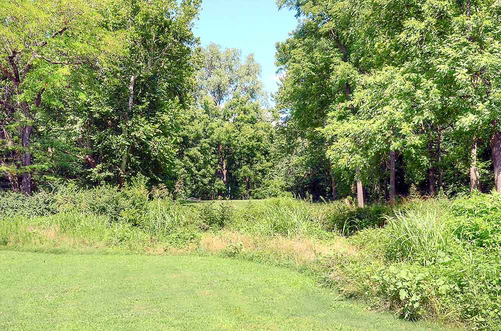 The-Athletic-and-Golf-Club-at-Maple-Creek,-Kansas-City,-MO-Ditch