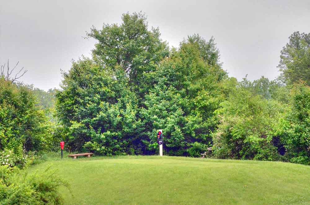 Viburnum-Golf-and-Country-Club,-Viburnum,-MO-Tee
