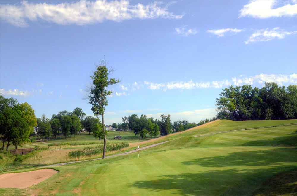 Whitmoor-Country-Club,-St-Louis-Tree