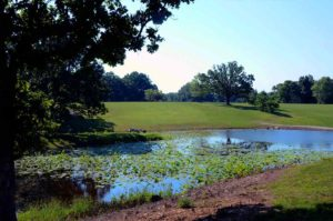 Willow Springs Municipal Golf Course