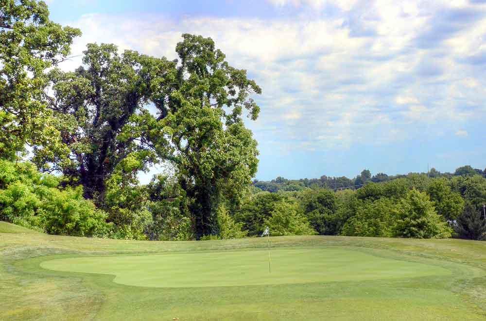 Windmill-Ridge,-Monett,-MO-Trees