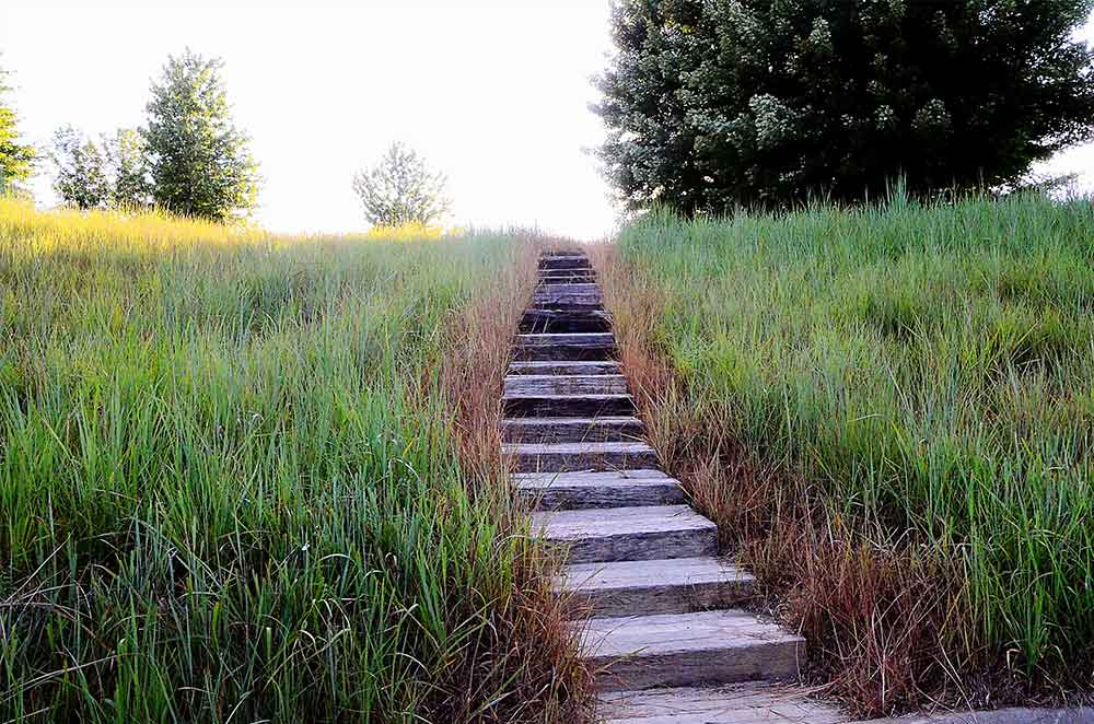 WingHaven-Country-Club,-St-Louis,-MO-Steps
