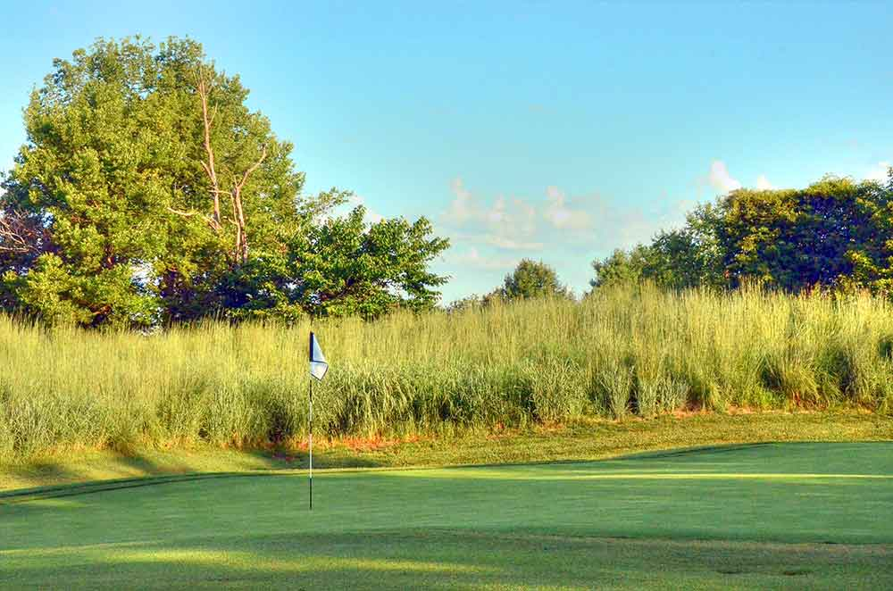 WingHaven-Country-Club,-St-Louis,-MO-Tall-Grass