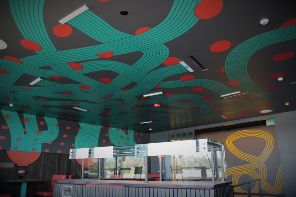Ceiling & Wall Graphics
