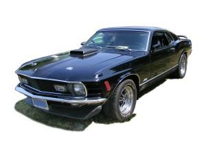 American Beauties: Muscle Cars