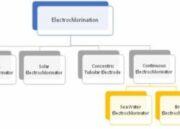 Electro chlorination system