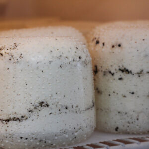 Tanto Latte Black Pepper Caciotta Cheese