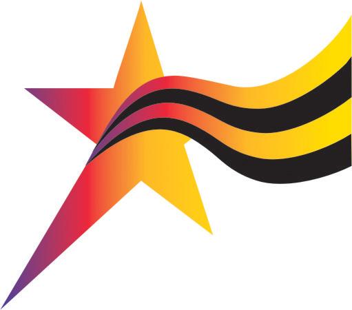 Logo Star of the South Dental Meeting