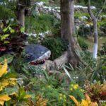 Best Botanical Garden Tour Jamaica