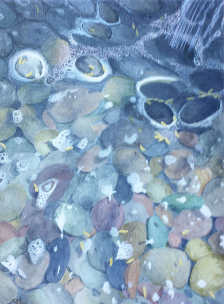 Water on the Rocks by Charlotte Burrill (June-Sept 2017, CBTC)