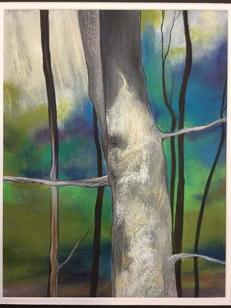 Walk in the woods by Stephanie Athanasaw (CBTC: Jan.-June, 2018)