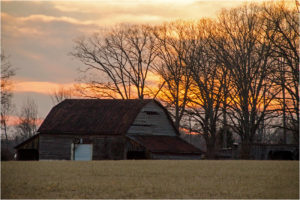 Sunset Barn Two, Photography on Metal by Dawn Whitmore, 12in x 18in, $225 (April 2018)