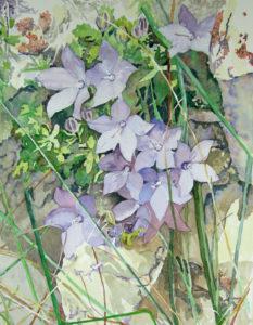 Flowers in Wall by Sally Rhone-Kubarek (CBTC: October 2018)