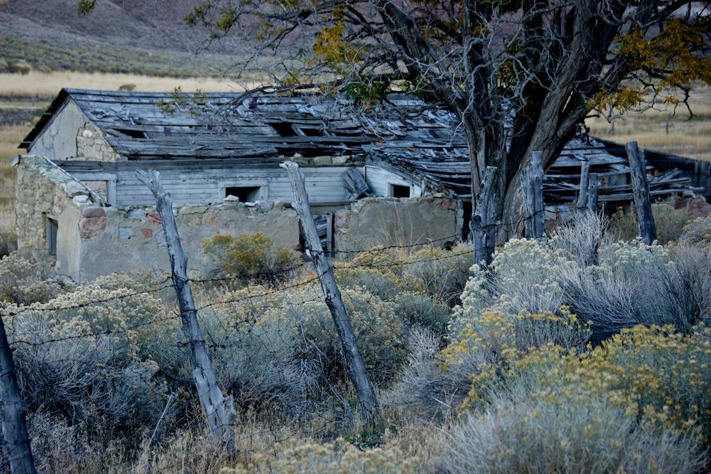 Nevada Neglect by Lee Cochrane (MG: September 2015)
