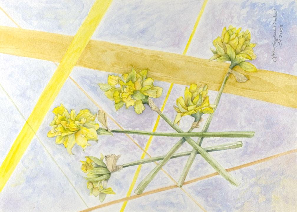 Daffodil by Lorrie Tucker (MG: June 2014)