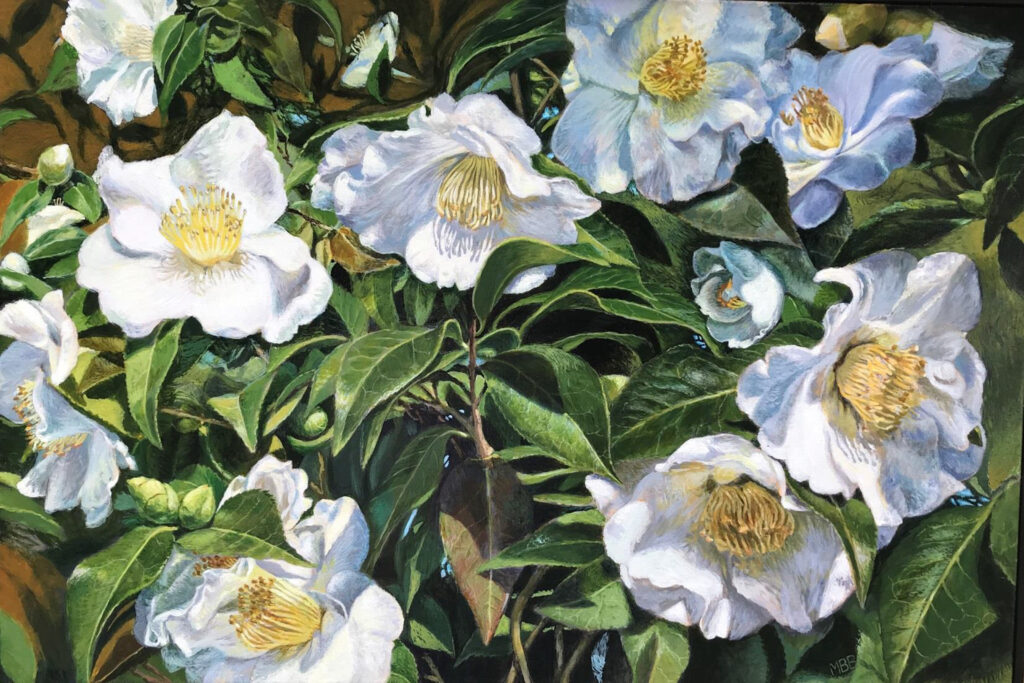 SECOND PLACE: Camellias from Lewis Ginter, Acrylic on Canvas by Mary Beatty-Brooks, 20in x 30in, $1200 (Dec. 2020 - Jan. 2021)