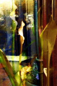 Reflections, Digital Creation by Carolyn R Beever, 18in x 12in, $150 (March 2021)