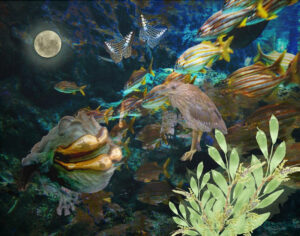 Underwater World, Digital Photo Composite by Taylor Cullar, 11in x 14in, $100 (March 2021)