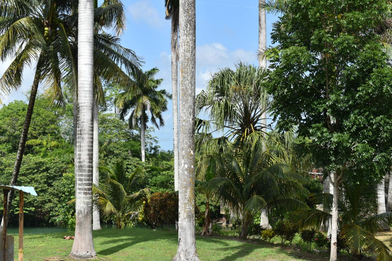 Our Belizean Family Vacation Recap Part I