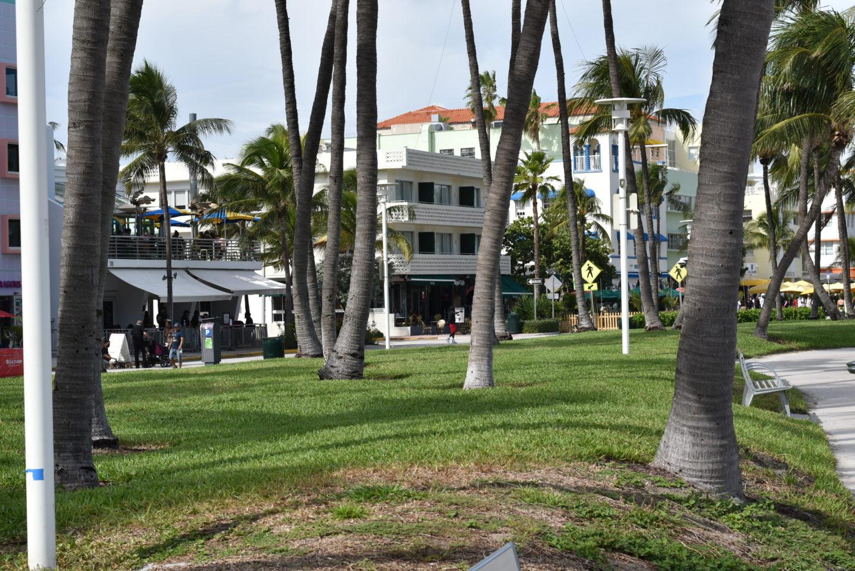 South Beach Miami during Covid