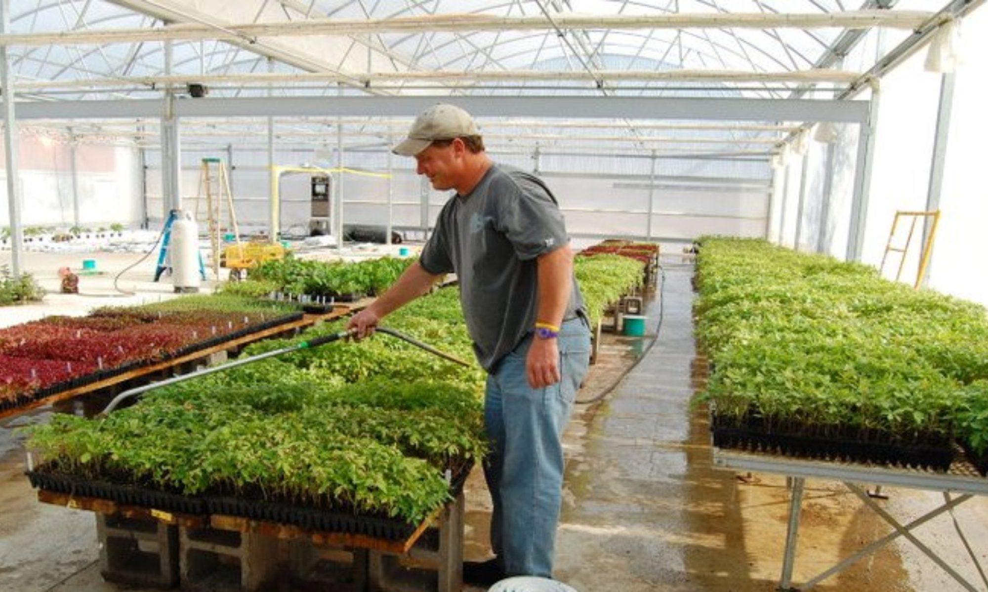 cropped-cropped-7000-sq.-ft-Geo-Thermal-GREENHOUSE.jpg