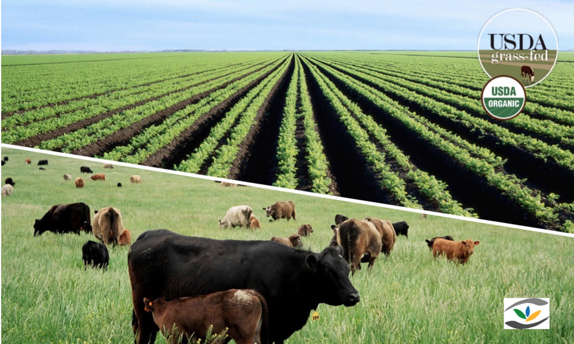 Aeon Holistic Agriculture, Inc.          organic farming