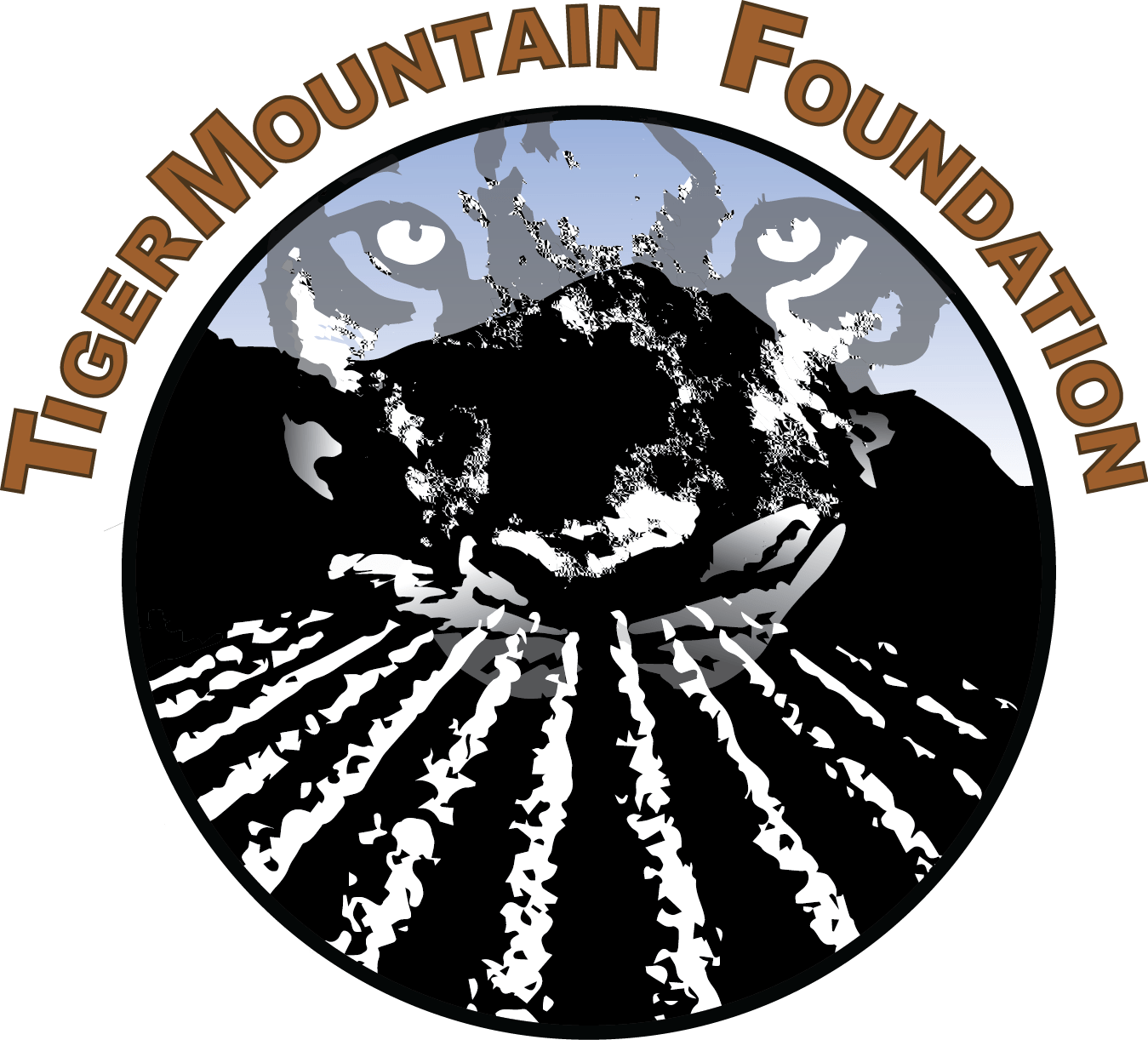 TigerMountain Foundation