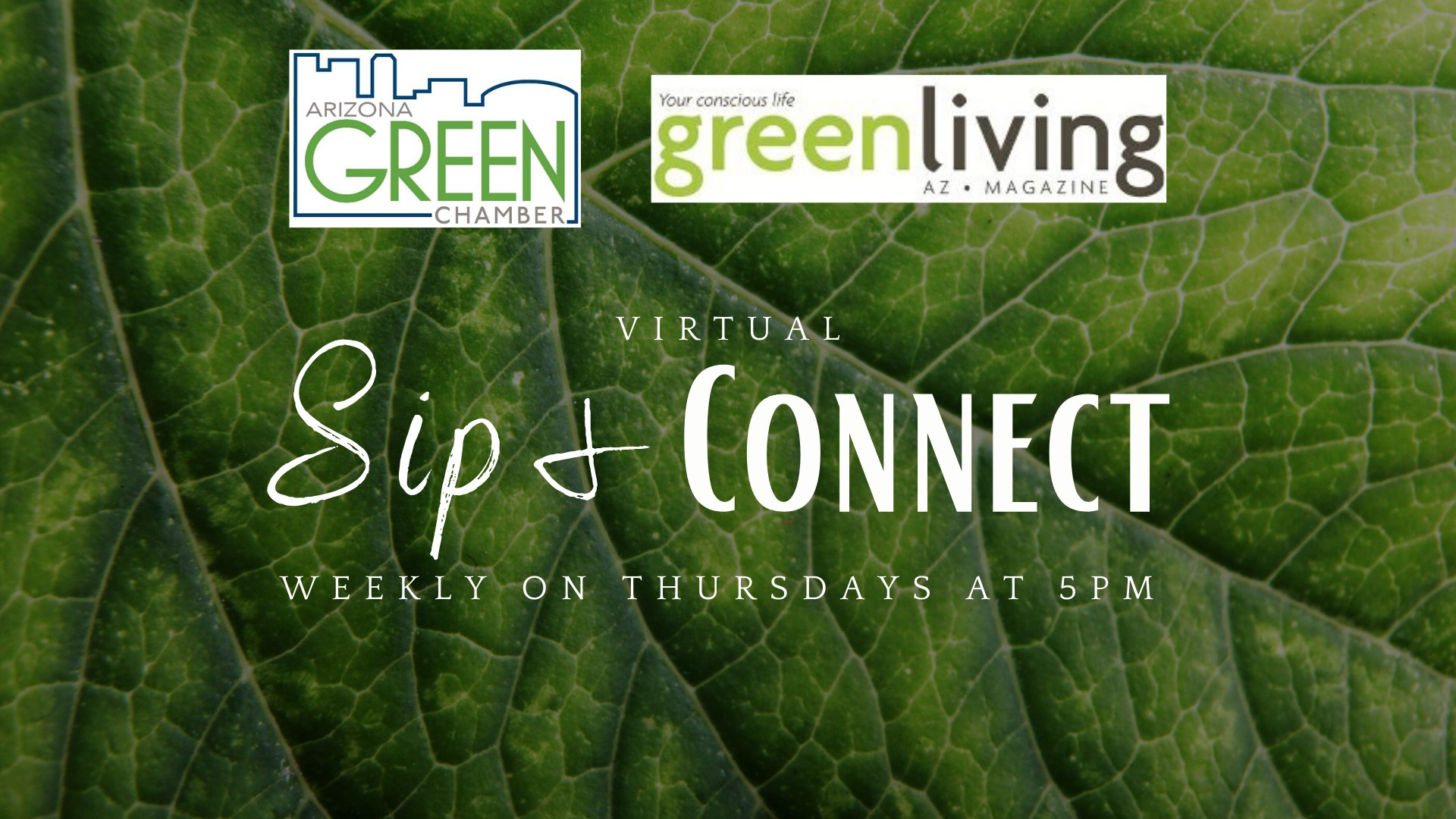 AZ Green Chamber of Commerce Sip & Connect features GreenLight Solutions