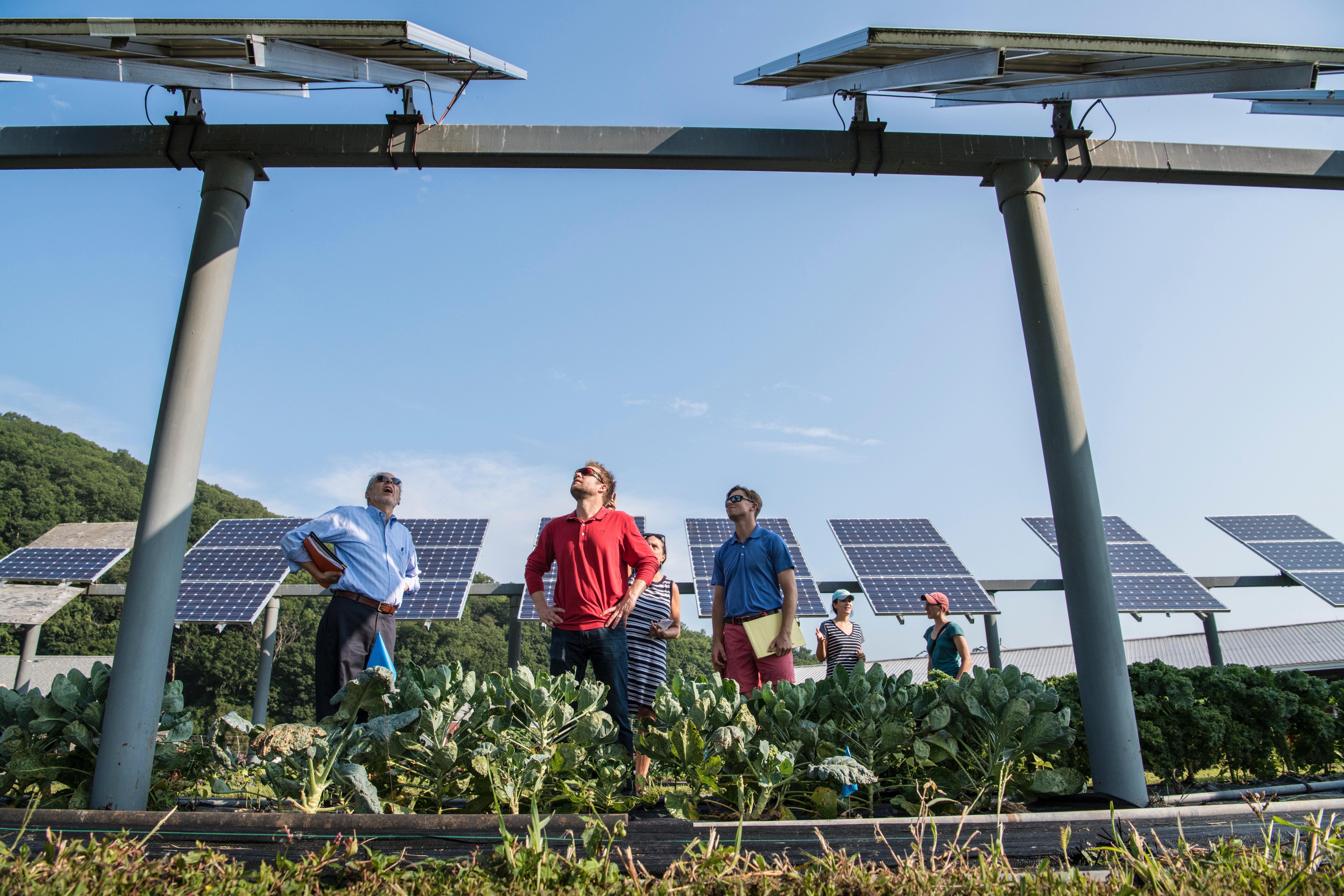 Empowering Solar in Arizona through Social Outreach