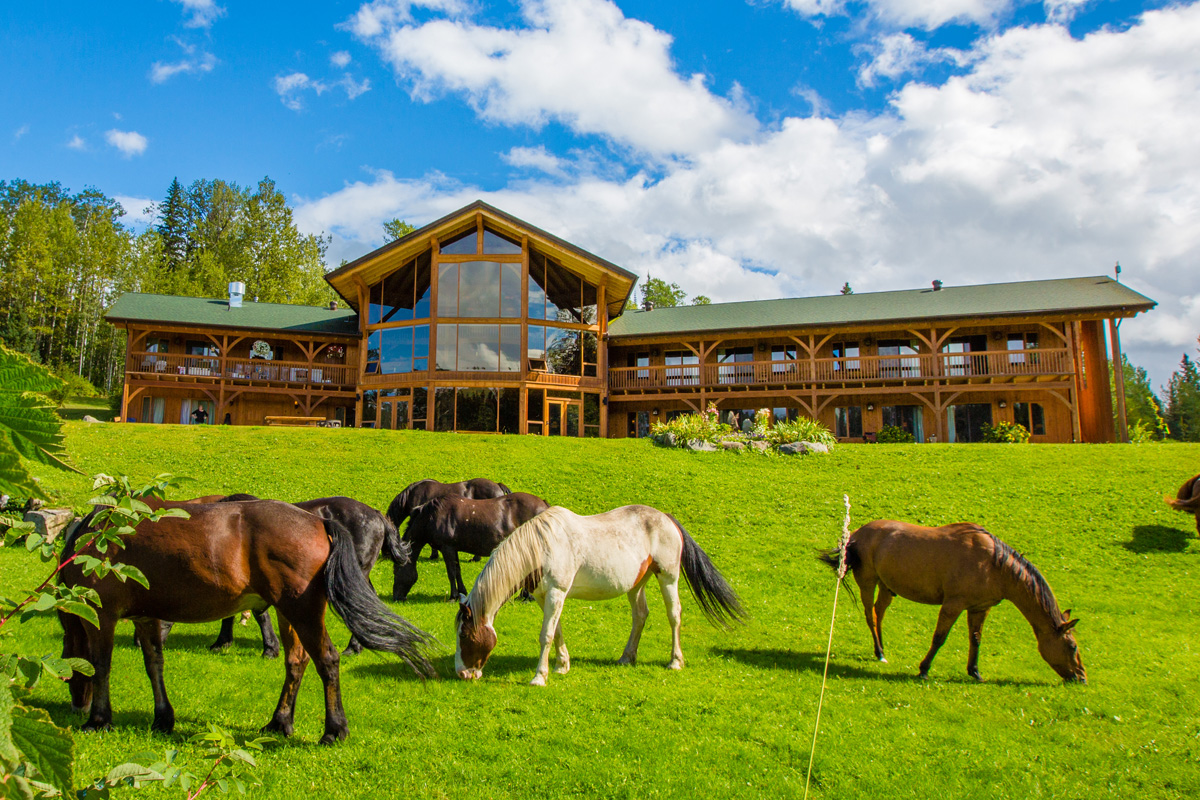A group of horses gather in front of a lodge
