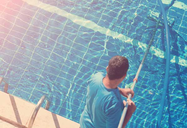 Cleaner of the swimming pool