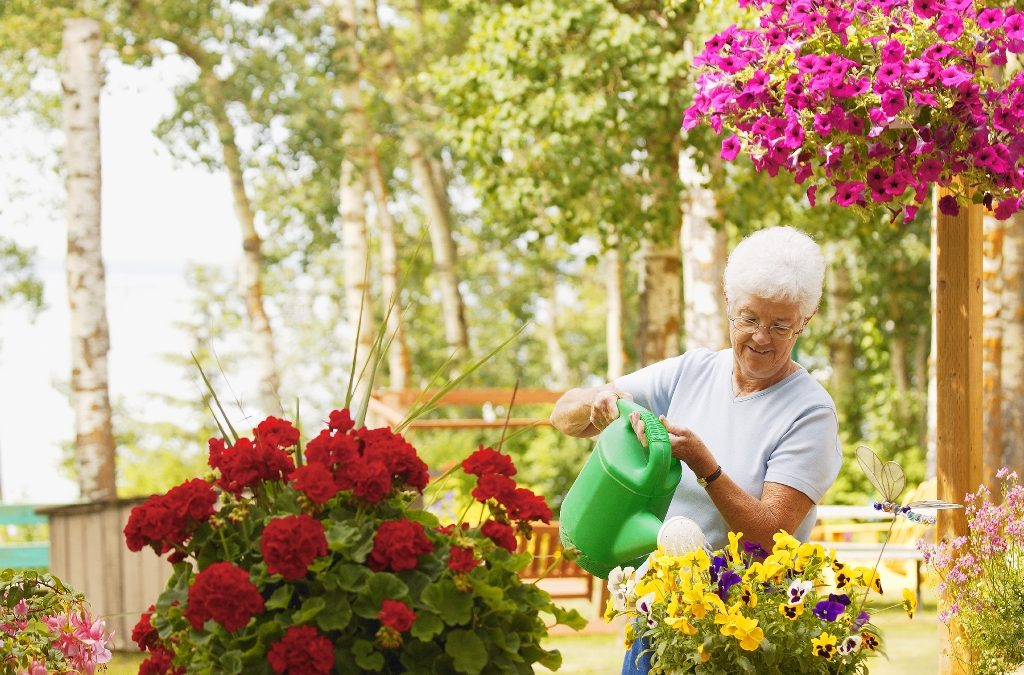 5 Ways for Seniors to Stay Safe in the Sun