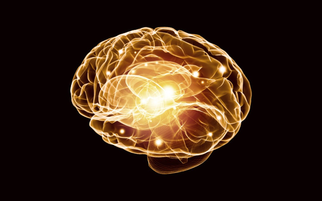 Artificial Intelligence Can Now Detect Early Alzheimer's Disease in Brain Scans