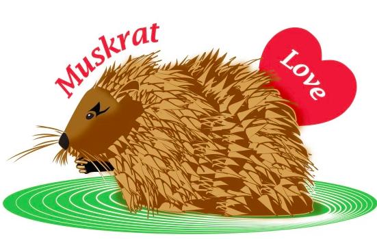 Muskrat Love: How I survived The Evergreen Sprint Triathlon