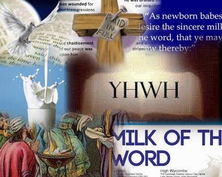 milkword Collage (440x352)