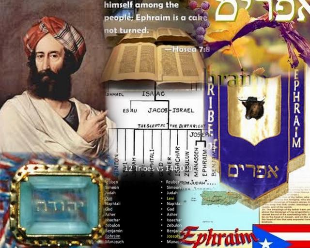 ephraim3 Collage (640x512)