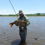 Chris Galvin stands in murky water under sunny Colorado skies holding a medium sized common carp caught on the fly.