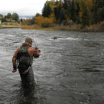 Wading fly fishing angler fights fish and prepares to net it