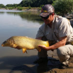 Crouched angler holding and admiring a well-lit golden colored carp.