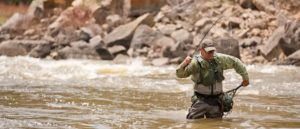 Man in fly fishing vest and waders prepares to net a Colorado River trout