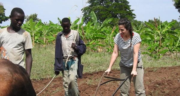 Organic Farming  And Cash Crops