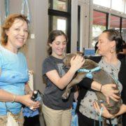 pet friendly event