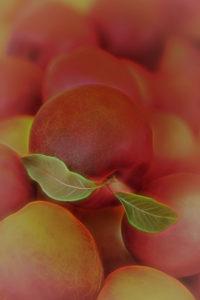 Valerie Interligi - Peaches At The Farm - Salon IOM