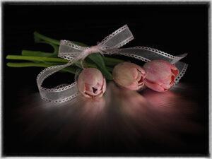 Valerie Interligi-Tulips And Running Reflection-Color Salon IOM