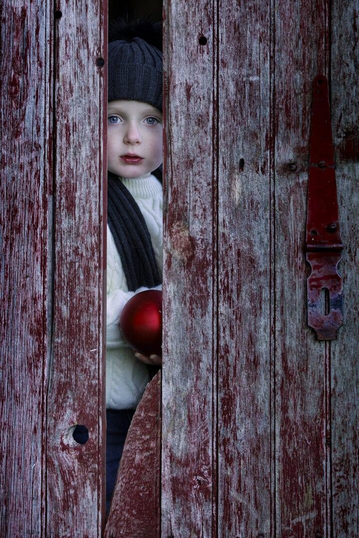 Small looking through old barn door