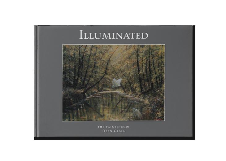 Dean Gioia Illuminated